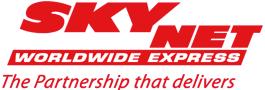 Logo Skynetitaly